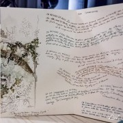 Florence Plissart, livre d'artiste, carnet Lozère, carnet voyage Lozère, lauzes, mélange texte dessin, carnet accordéon, leporello