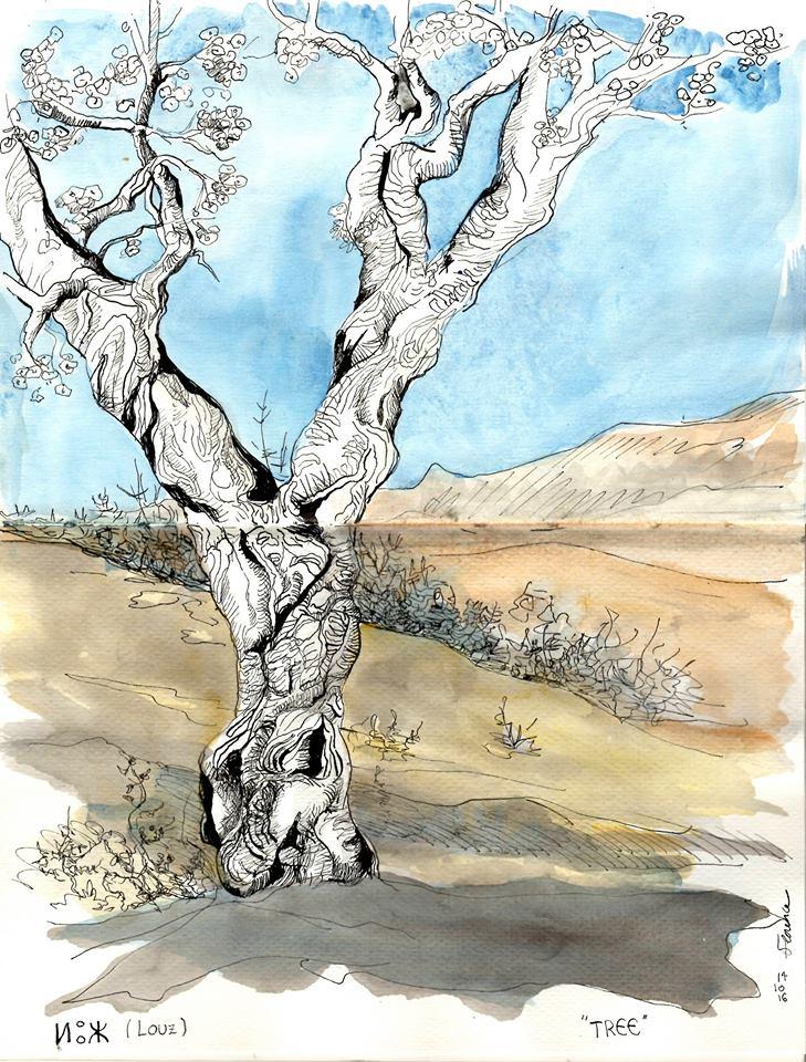 inktober_florence_plissart_arbre_amandier