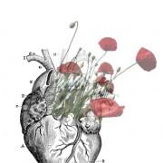 Florence Plissart, logo coeur, illustration coeur, image surréaliste, collage surréaliste, collage paint, coeur en fleurs