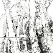 Florence Plissart, arbres, aquarelle, carnet de voyage, croquis forêt, dessin forêt, Licques, dessin arbre, arbre encre de Chine